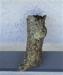 Small Cork Bark Tube