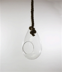 "Large 10"" Glass Tear Drop Plant Orb/Terrarium with Rope Hanger"