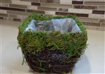 "4"" Square Wicker Basket With Moss Rim"