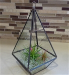 "9.5"" Geometric Glass Plant Terrarium-Pyramid FREE Shipping"